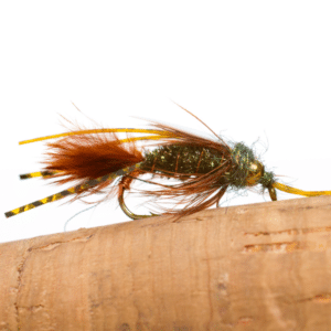 best fly fishing entomology insects